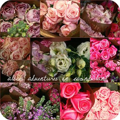 {Roses}