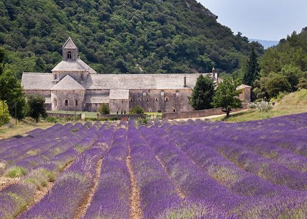 {Posterlon - Provence}